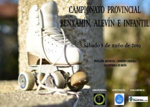 2019-06-08-PA-Cartel-Provincial-Pontevedra
